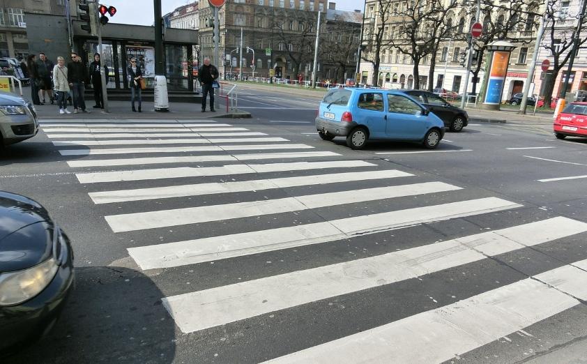 Na co patrzą i co widzą kierowcy?